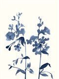 Indigo Wildflowers III