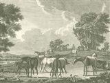 Equestrian Scenes I