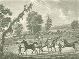 Equestrian Scenes III