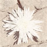 Stone Blossom III