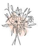 Lilies on Pink II