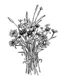 Black & White Bouquet I