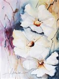 Blooms Aquas I