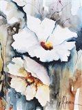 Blooms Aquas II