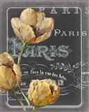 Chalkboard Paris II