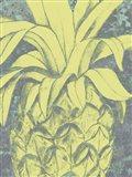 Kona Pineapple I