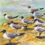 Sea Birds Watercolor II