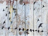 Birds on Wood III