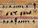Birds on Wood V