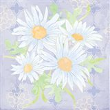 Daisy Patch Serenity I