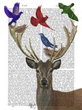 Deer & Birds Nests
