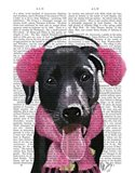 Black Labrador With Ear Muffs