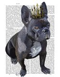French Bulldog King
