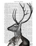 Deer Portrait 2