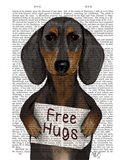 Dachshund Free Hugs