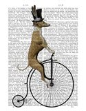 Greyhound on Black Penny Farthing Bike
