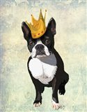 Boston Terrier and Crown