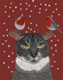 Grey Cat and Robins