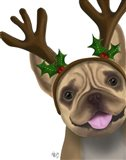 French Bulldog, Antlers 2