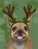 French Bulldog, Antlers 1