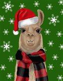 Llama, Christmas Hat