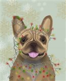 French Bulldog, Christmas Lights 1