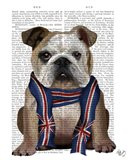 English Bulldog with Scarf
