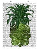Pineapple, Monstera Leaf