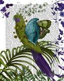 Fantasy Parrot 1