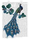 Peacock Soul Gatherer
