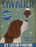 Cavalier King Charles, Brown White, Ice Cream