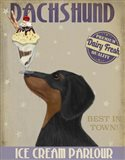 Dachshund, Black and Tan, Ice Cream