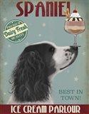 Springer Spaniel, Black and White, Ice Cream