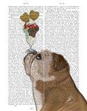 English Bulldog Ice Cream