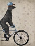 Poodle on Bicycle, Black