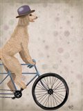 Poodle on Bicycle, Cream