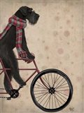 Schnauzer on Bicycle, Black