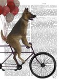 German Shepherd on Bicycle