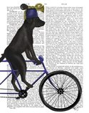 Black Labrador on Bicycle