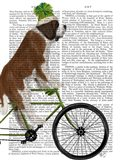 St Bernard on Bicycle