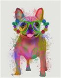 Rainbow Splash French Bulldog, Full