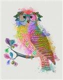 Rainbow Splash Owl