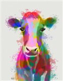 Rainbow Splash Cow
