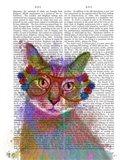 Rainbow Splash Cat 1
