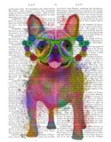 Rainbow Splash French Bulldog, Full