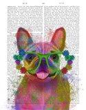 Rainbow Splash French Bulldog, Portrait