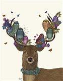 Deer Birdkeeper, Owls