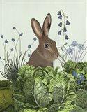 Cabbage Patch Rabbit 2
