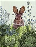 Cabbage Patch Rabbit 6