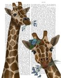 Chewing Giraffe Duo